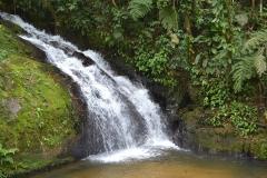 Cachoeira do Alecrim - Foto Google Images